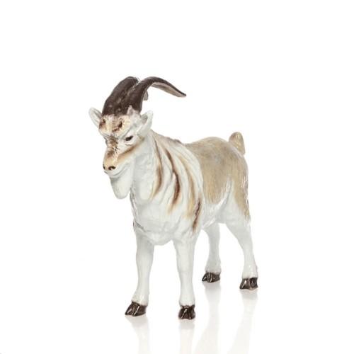 Горный козел F01155