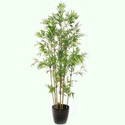 Бамбук 200 см.