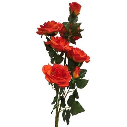Роза горшечная Фрея