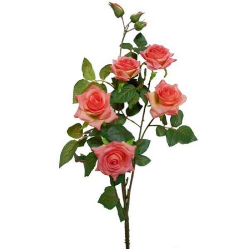 Роза малая
