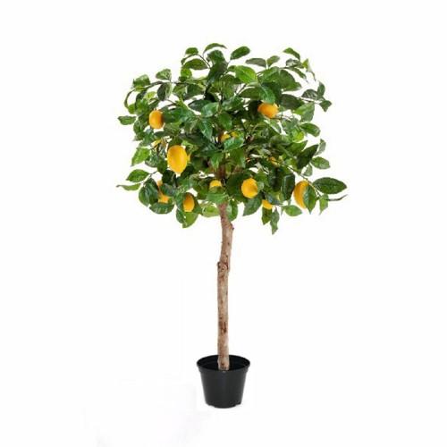 Лимон 140 см